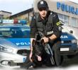 Policjanci uratowali psa