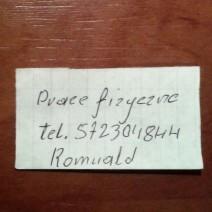 Pan Romulad szuka pracy!