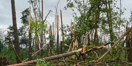 Warszawa pomoże mieszkańcom wsi zniszczonej przez nawałnice