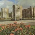 Stanów Zjednoczonych / Międzynarodowa, 1981 r.