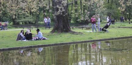 Warszawa zostanie Zieloną Stolicą Europy? Jest już na półmetku