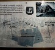 Program obchodów 71. rocznicy powstania