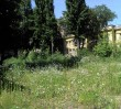 Nowe miejsce: Ogród miejski na Kruczej 7