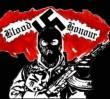 Rozbito neonazistowską organizację!