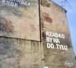 Nowe murale Loesje!