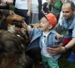 Dzień Psa w Parku Praskim [PROGRAM]