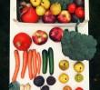 Warszawski start-up: koszyk warzyw i owoców z dostawą do domu!