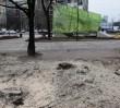 Władze Warszawy chcą wstrzymać wycinkę w parku Świętokrzyskim. Przygotowano już decyzję