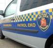 """Eko Patrol uratował rannego kruka. """"Był oszołomiony"""""""