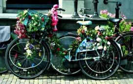 2000 rowerów na 2013 rok