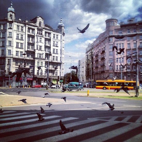Fot. Tomasz R. (wysłane z Instagram)