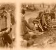 Puszcza Kampinoska - w poszukiwaniu łosia (WYCIECZKA)