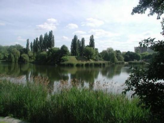 Jeziorko w Parku Szczęśliwickim. Fot. UM Warszawa