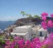 Zorba na dachu czyli Dzień Grecki na Saskiej Kępie
